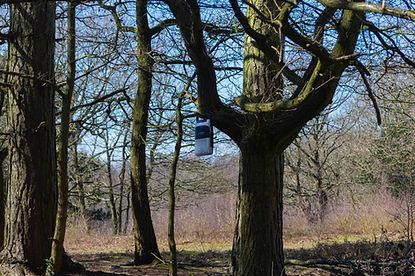 Cassette player in park-6.jpg