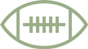 if_icon-8-football_315803.png