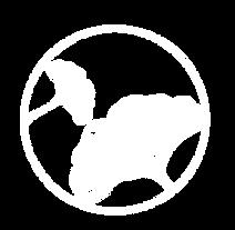 icon moringa studios