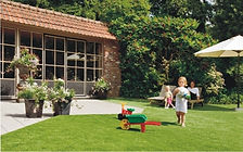 Grama Comfort Grass na casa de campo