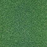 Grama Comfort Grass - Summer