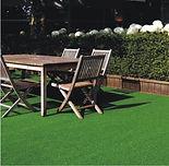 Grama Comfort Grass - Summer club