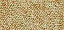 Carpete Dynamic na zona sul