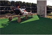 Grama Comfort Grass - Summer na fazenda