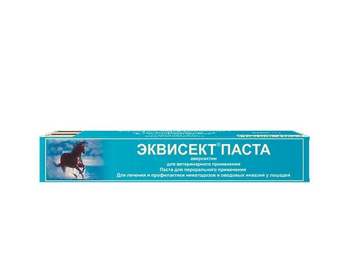 Эквисект Паста шприц-дозатор (14г)