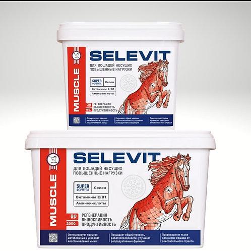 SELEVIT-комплекс.  Витамины E-В1/селен/аминокислоты