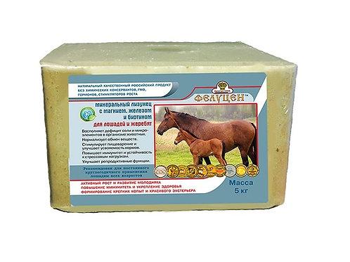 Фелуцен солевой лизунец для лошадей с биотином, селеном, магнием. 5кг