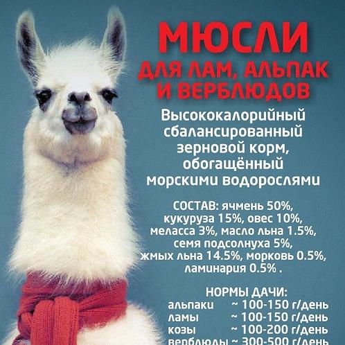 Мюсли для лам, альпак и верблюдов! 20кг.