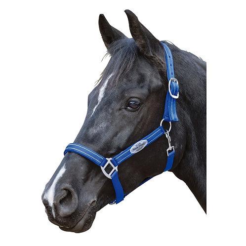 "Недоуздок ""Halfter horse"" Royal blau"
