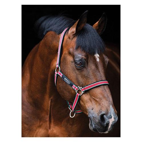 Прочный недоуздок Horseware AMIGO Red