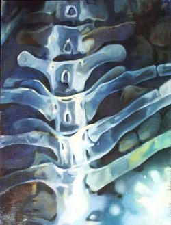 Spinal Column, 2013