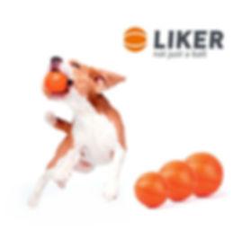 Liker Logo.jpg