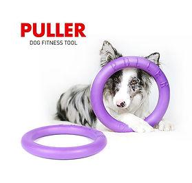Puller Logo.jpg