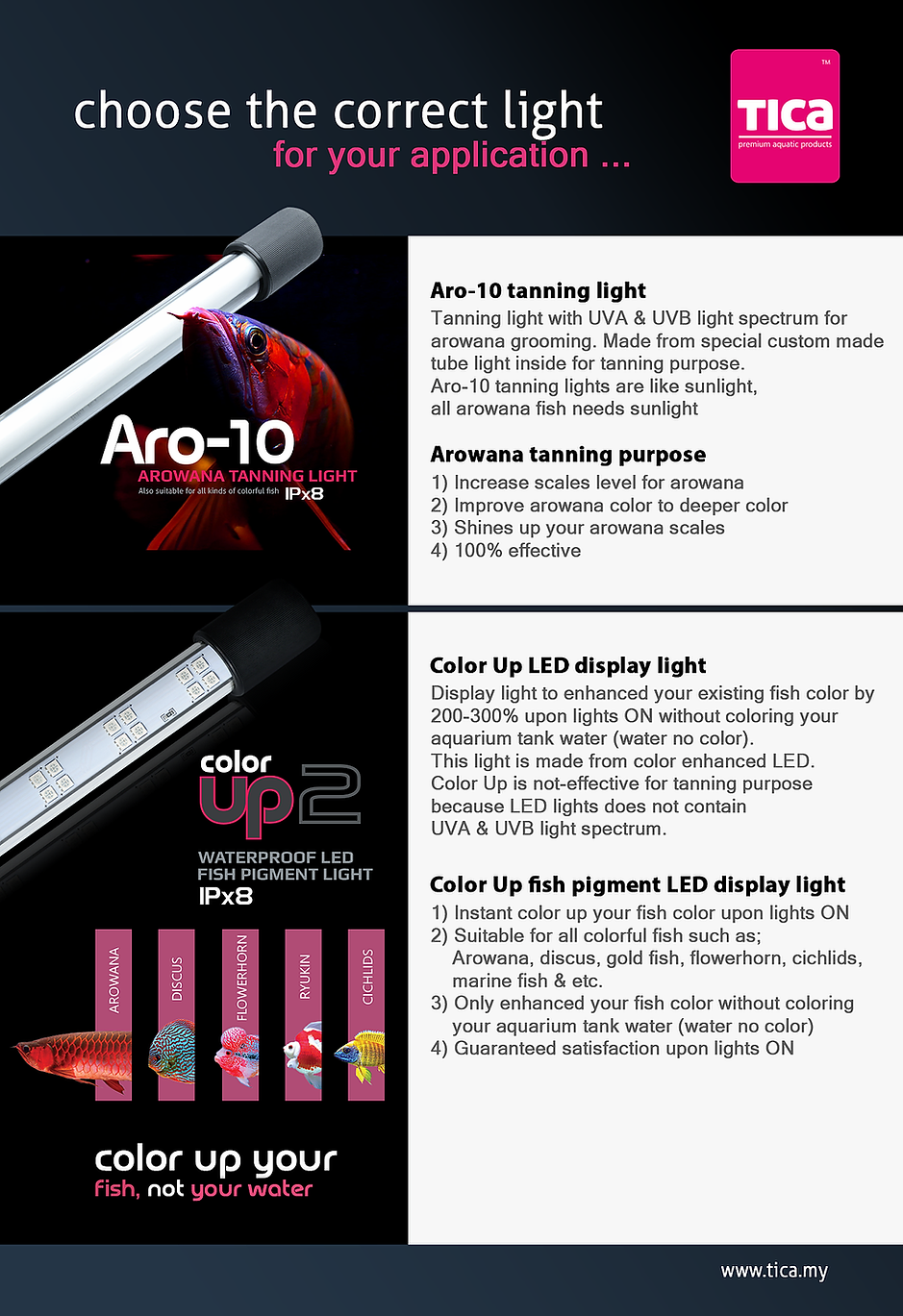 Color-Up-&-Aro-10-different-usage_2.webp