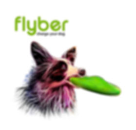 Flyber Logo.jpg
