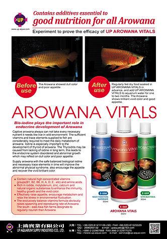 AROWANA VITALS  300ML.jpg