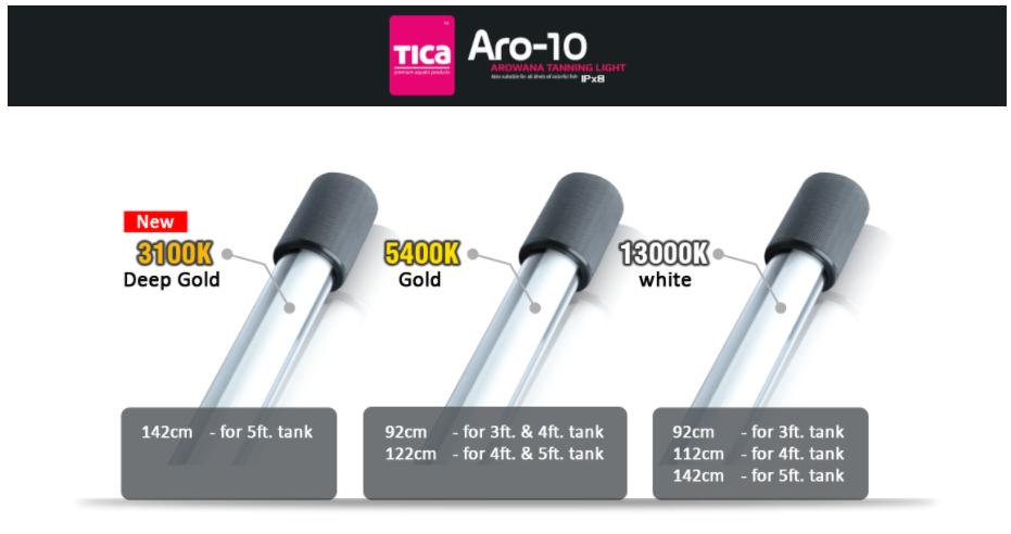 Aro-10 2.png