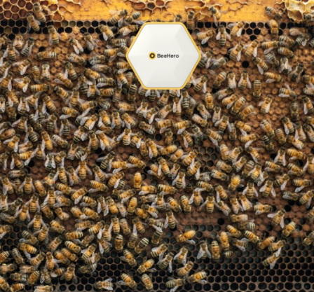 BeeHero: Smart Pollination