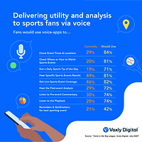 Voxly Digital_Utility and Analysis_July