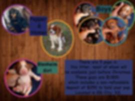 Pepper collage.jpg