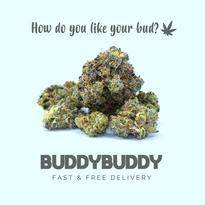 BuddyBuddy Fast & Free Delivery
