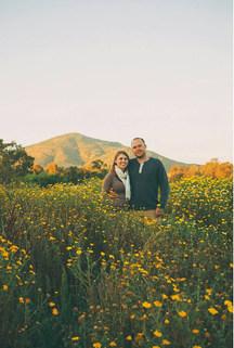 Destination Dates flower fields