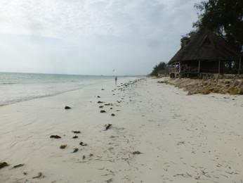 Ndame Lodge Zanzibar. P1040158 (3).JPG