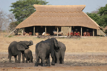 02_elephants at Camp Hwange (1).jpg