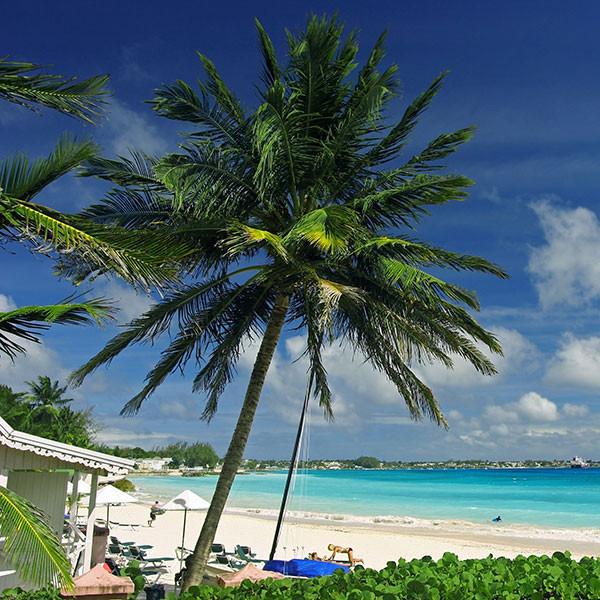 Bridgetown_Barbados_cruise_CelebrityCrui