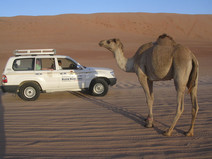 Oman - Muscat -Img2115 (7).JPG
