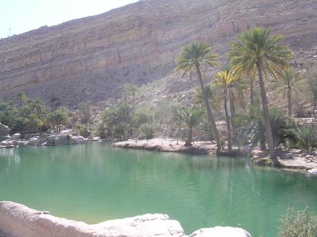 Oman - Wadi- in dester .Muscat -Img2115 (4).JPG