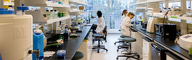 research-lab-article.jpg