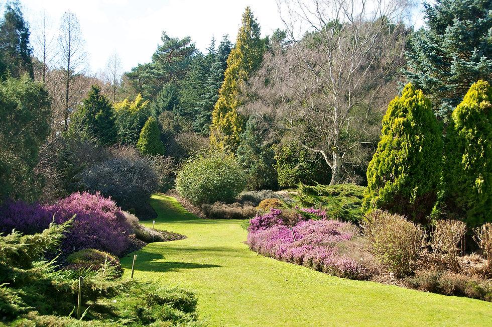 Valley gardens harrogate