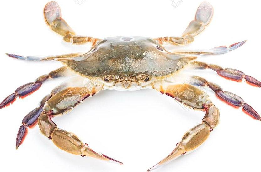 Whole Crab 200-300g , 냉동 꽃게