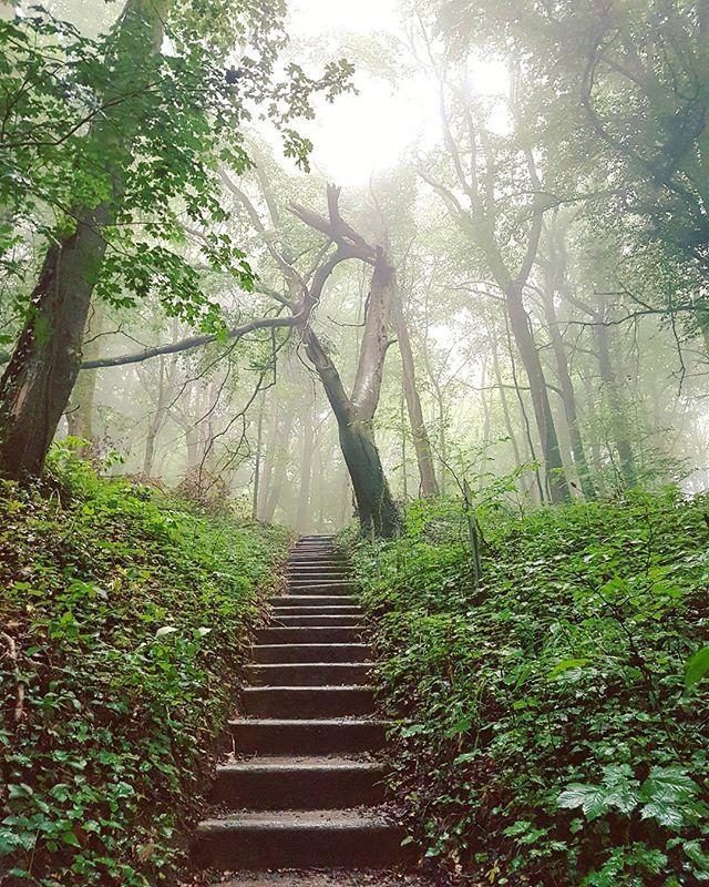 Trailrunning du jour _ Vallée de Montvaux sans oublier quelques allers retours dans les 360 marches