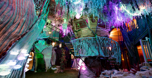 Have you been to Meow Wolf?