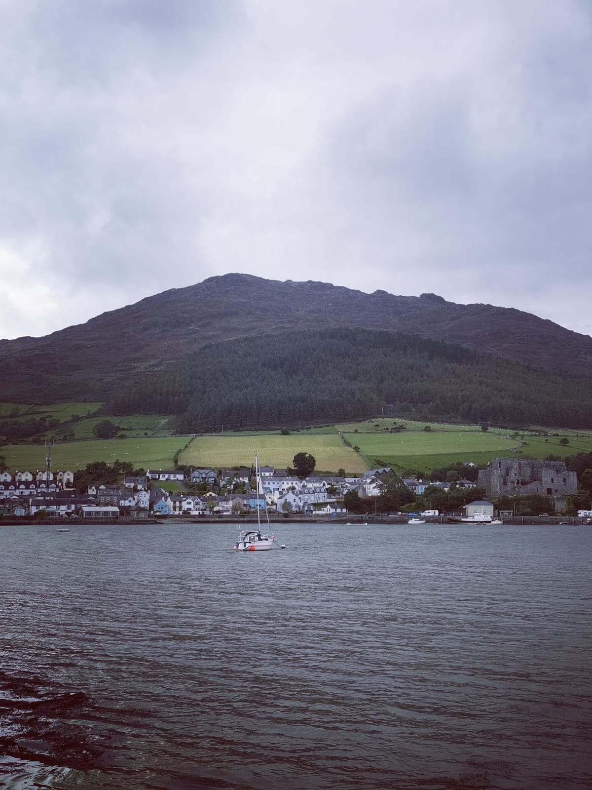 Carlingford town and Slieve Foye