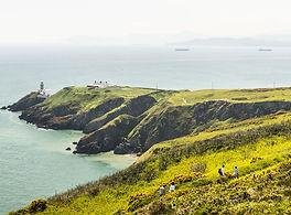 yellow gorze covered peninsula of Howth Head