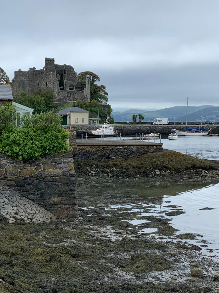 Carlingford harbour and castle
