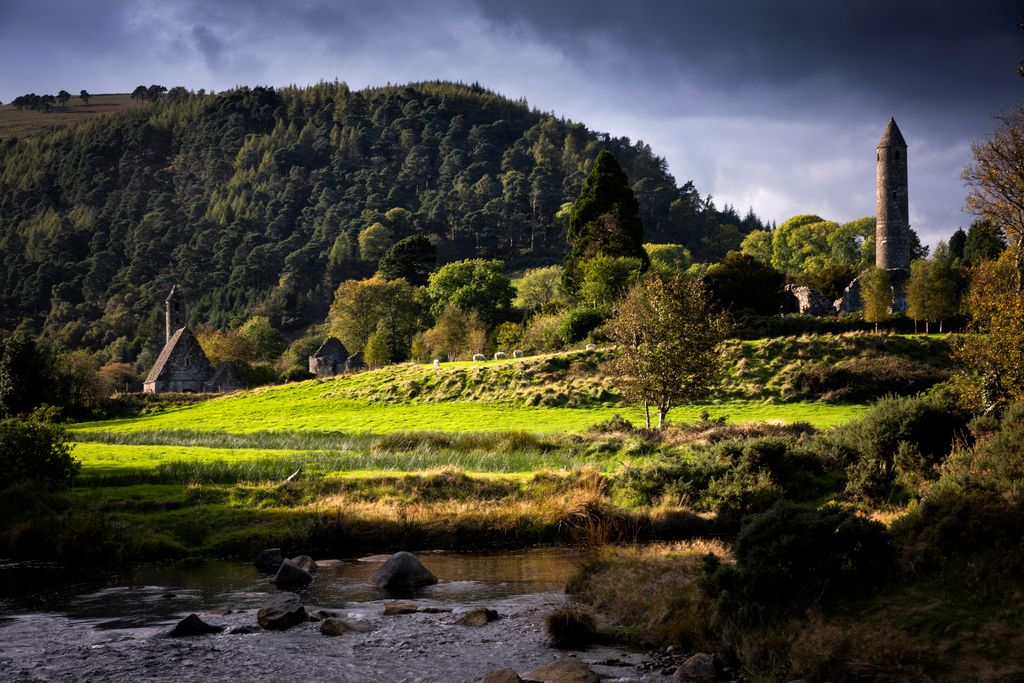 Forested hill and Glendalough