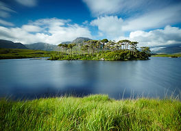 wooded island on a lake in Connemara