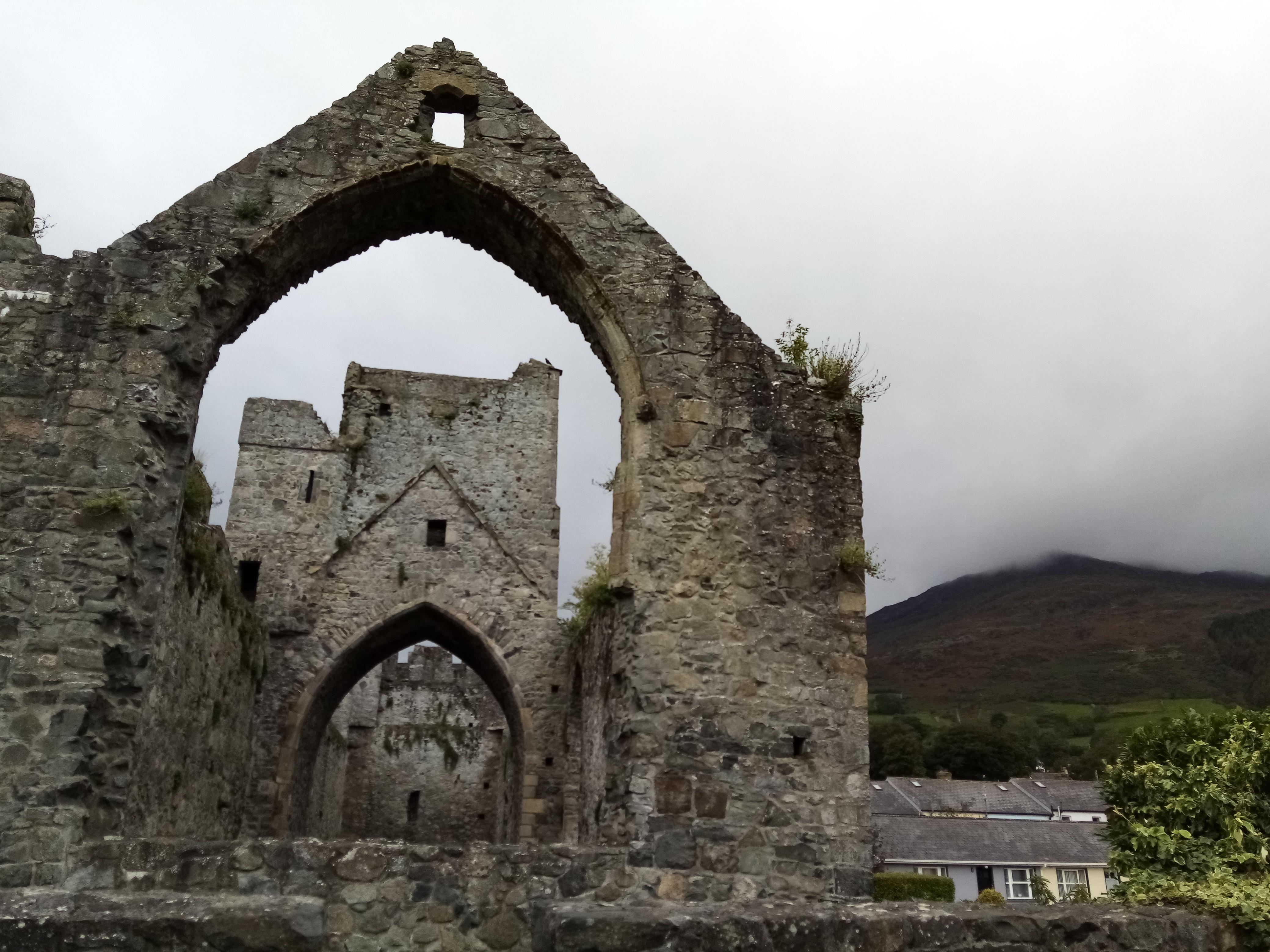 Carlingford Priory ruins