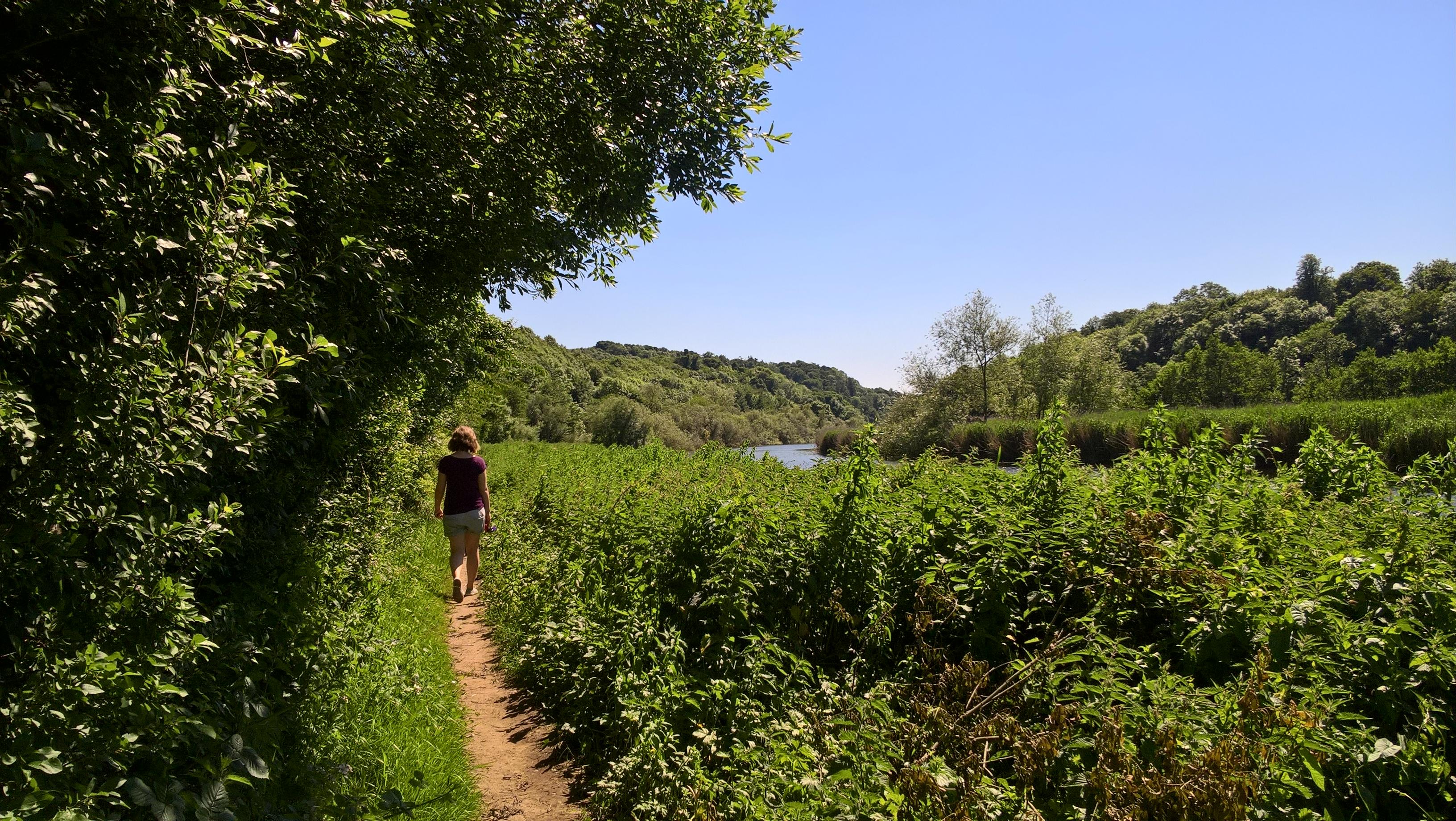 River Boyne Walk