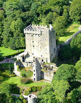Ruins of Blarney Castle surrounded by forest
