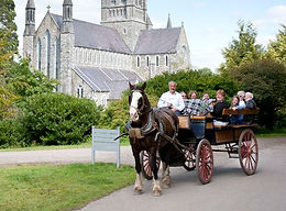 Jauting car in front of St Mary's Cathedral