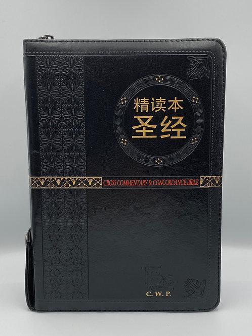 精读本圣经(简体中文)