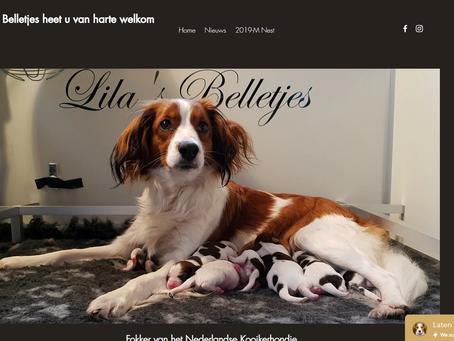 Facelift website