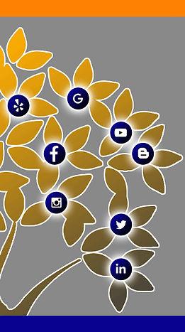 Blue Orange, social media