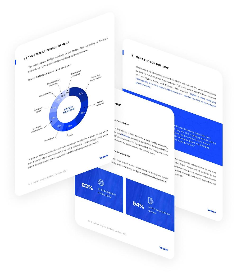 Fintech Software Vendor Overview