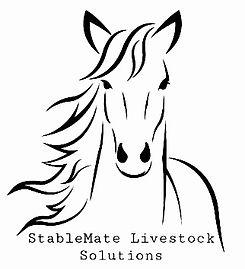 StableSponsor Logo.jpg